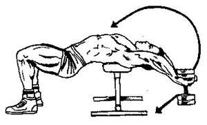 Техника пуловер с гантелей лежа на скамье