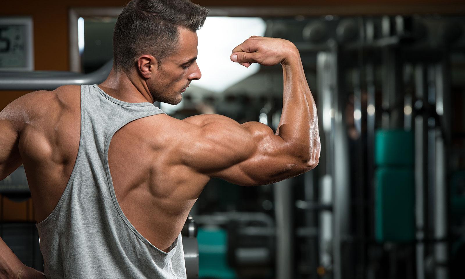 бодибилдинг картинка мышц всем