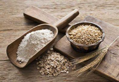 Толокно – калорийность, свойства и как готовить