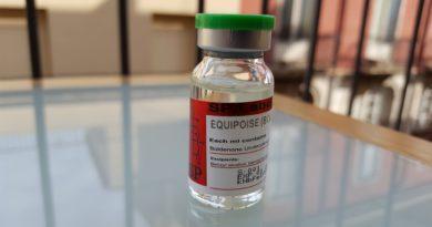 Болденон (Эквипойз) – описание препарата